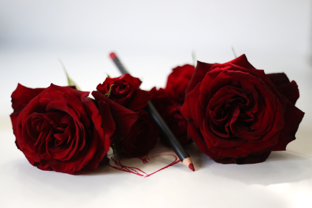 photo Red-roses-Valentines-day-Emma-Hoareau_zpswwggyttn.png